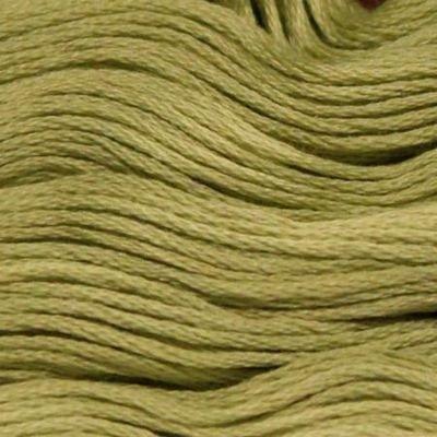 Presencia Embroidery Floss-5224 Light Khaki Green