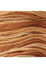 Presencia Embroidery Floss Variegated-9930 Creamy Caramel