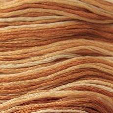 Presencia Embroidery Floss Variegated-9930 Creamy Caramel