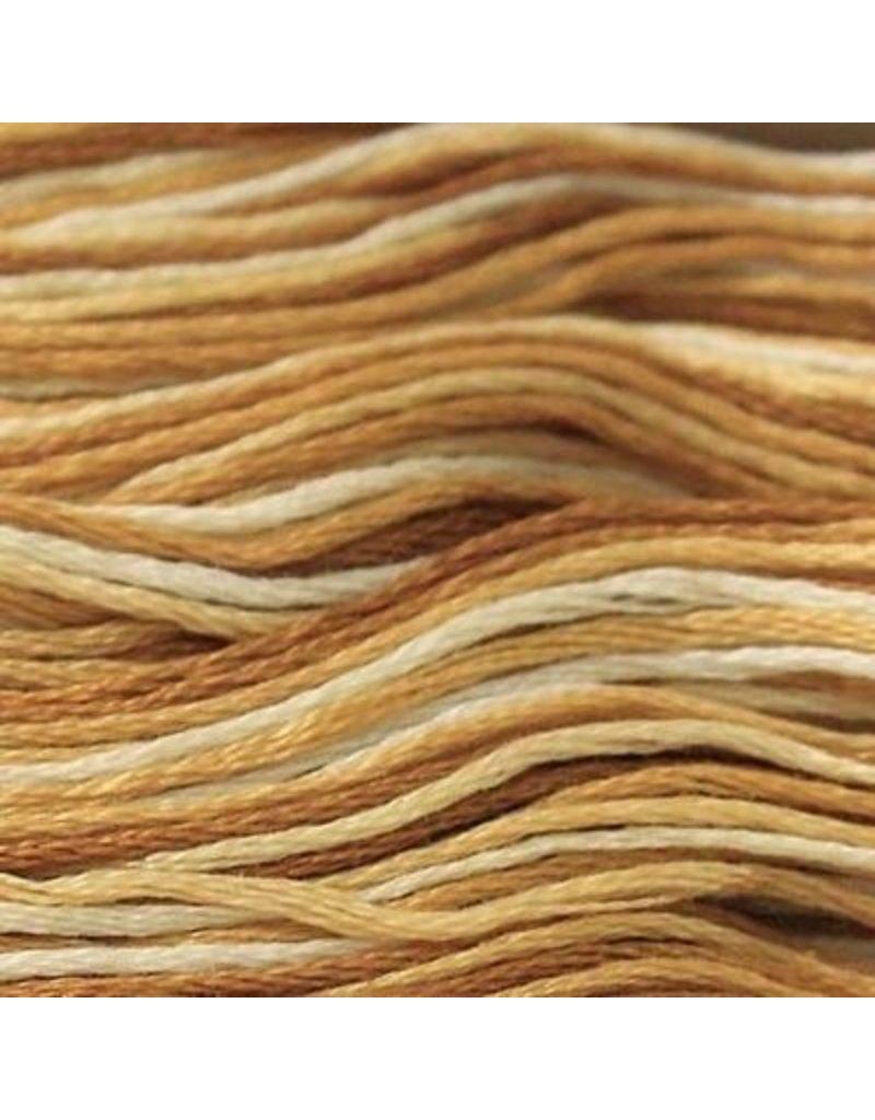 Presencia Embroidery Floss Variegated-9920 Terrific Coffee