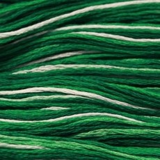 Presencia Embroidery Floss Variegated-9840 Emerald Isle
