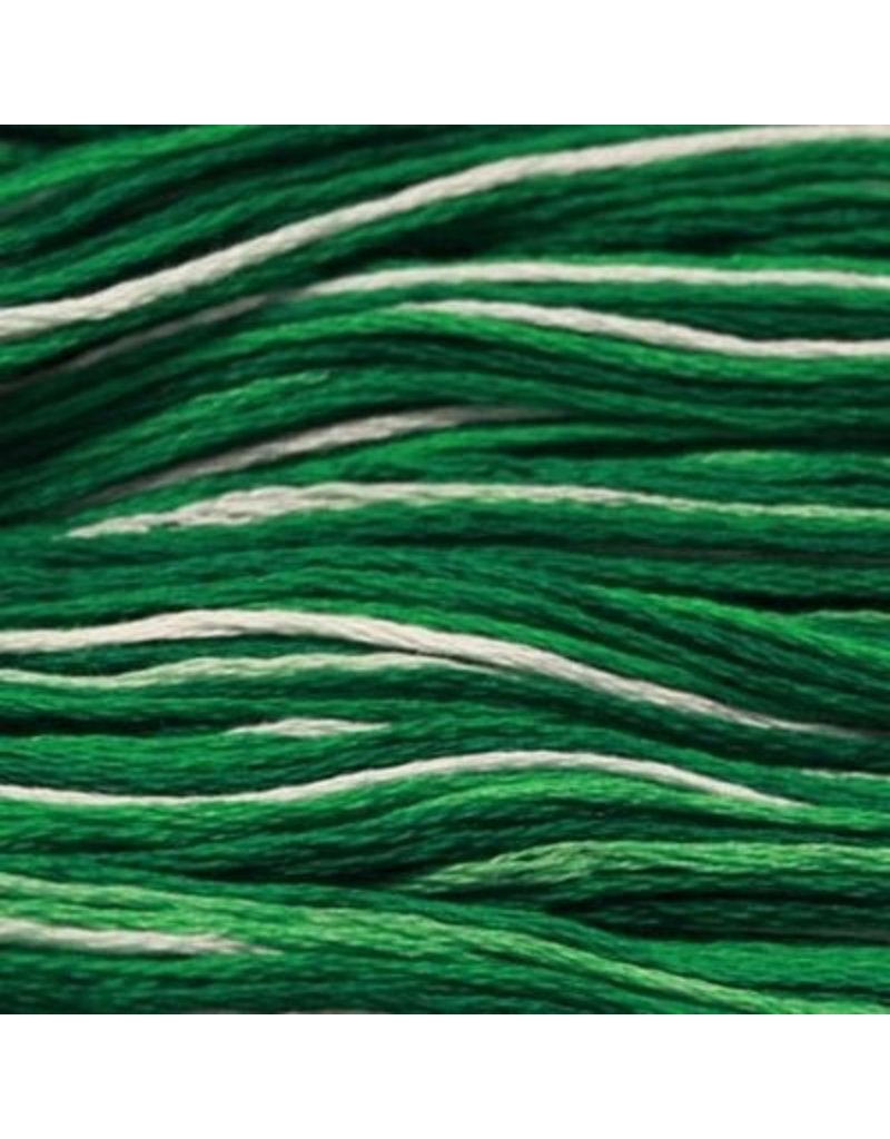 Presencia Embroidery Floss Variegated-9840 Emerald Isle
