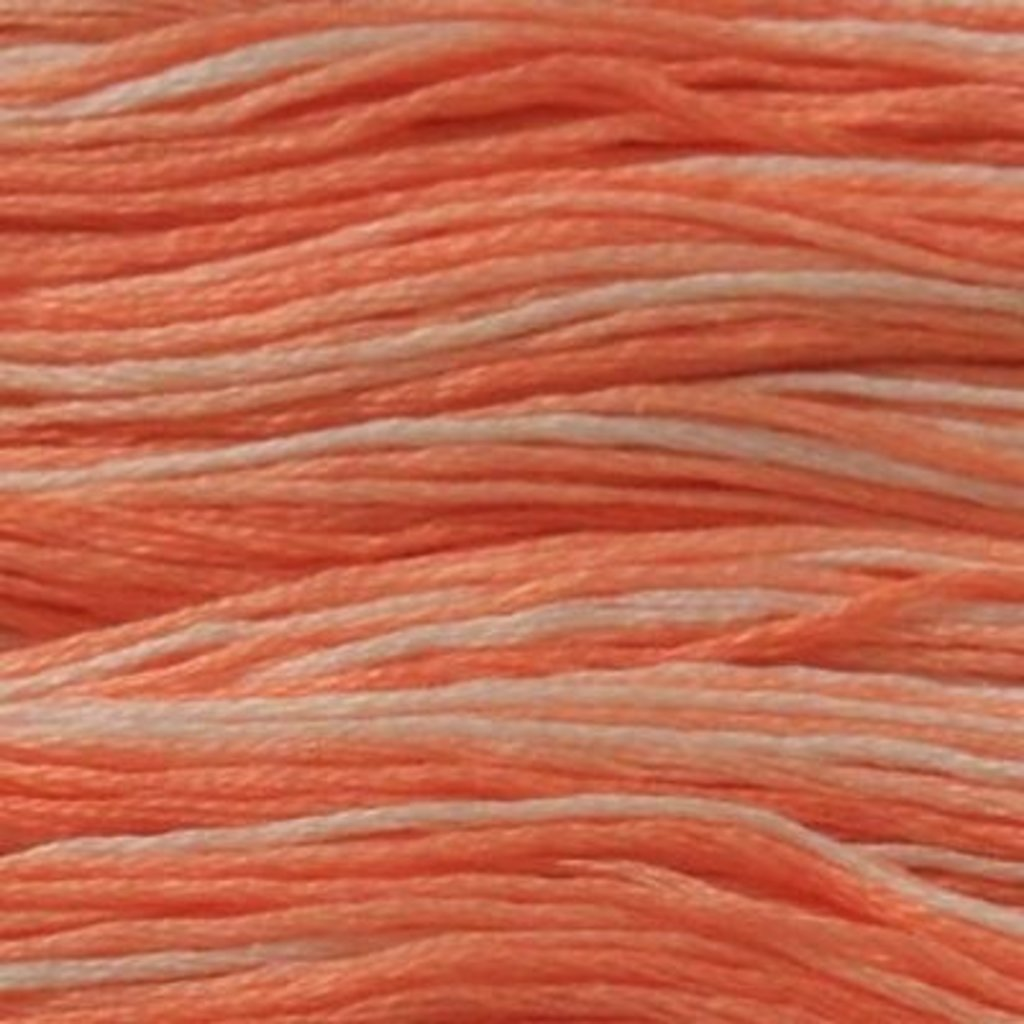 Presencia Embroidery Floss Variegated-9175 Fresh Salmon