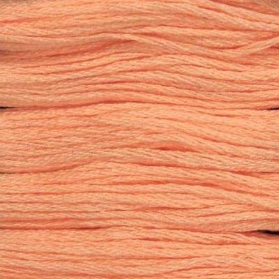 Presencia Embroidery Floss-1468 Peach