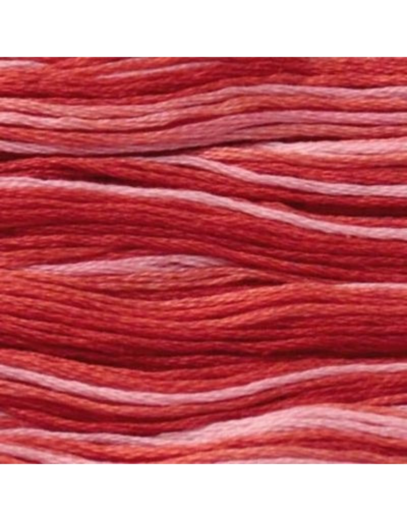 Presencia Embroidery Floss Variegated-9250 Coral Reef