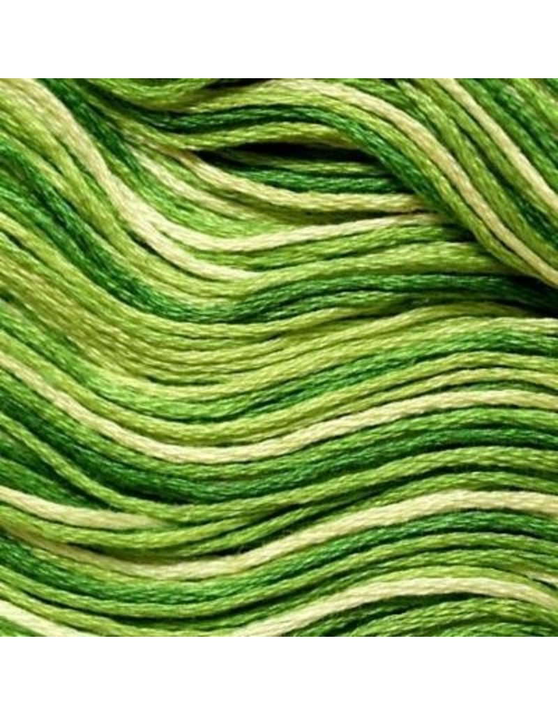 Presencia Embroidery Floss Variegated-9850 Yellow Green