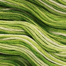 Presencia Embroidery Floss Variegated-9865 Deep Forest