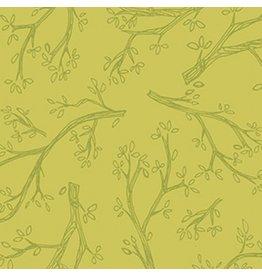 Spring Robins Y2375-24