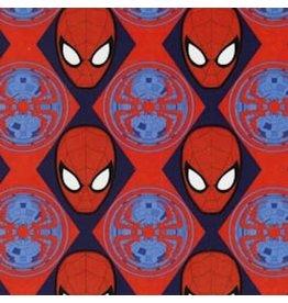 Ultimate Spiderman CAM13080107-2