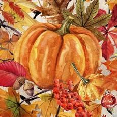 Our Autumn Friends IBFOUA3OAF-2