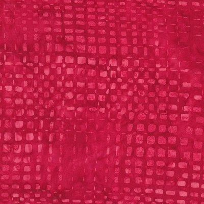 Tonga B4548-Berry