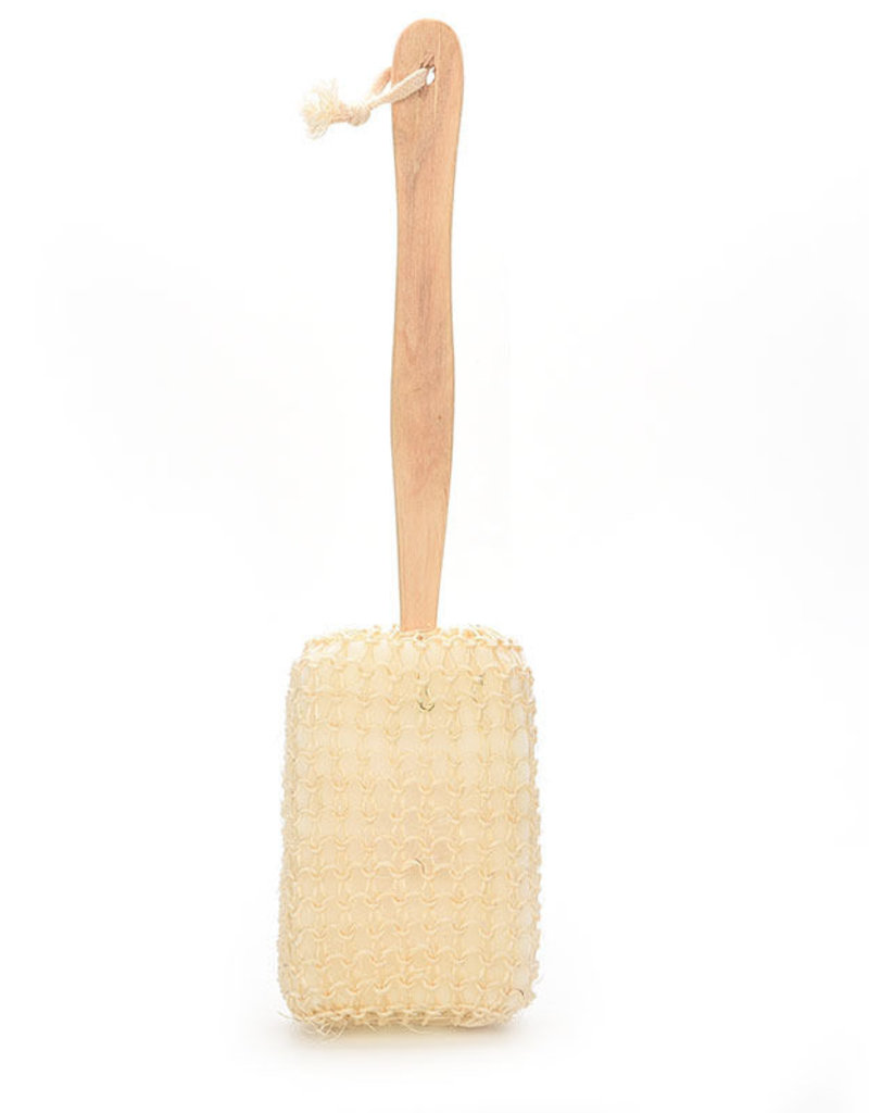 Shower Sponge with Handle