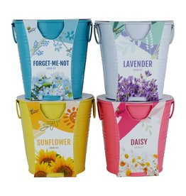 Buzzy Seeds Flower Grow Pail