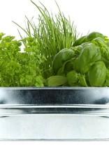 Buzzy Seeds Kitchen Herb Galvanized Windowsill