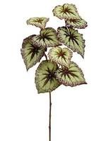 """Allstate 26"""" Begonia Leaf Spray"""