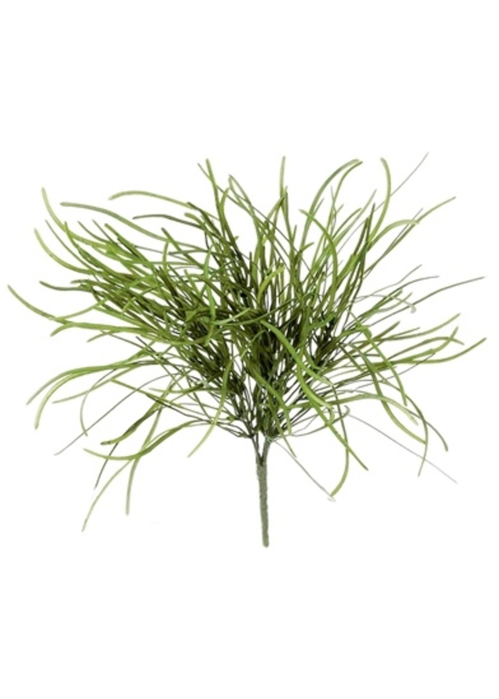 Sullivans Seeded Grass Spray SBR