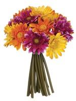 Sullivans Gerber Daisy Bouquet