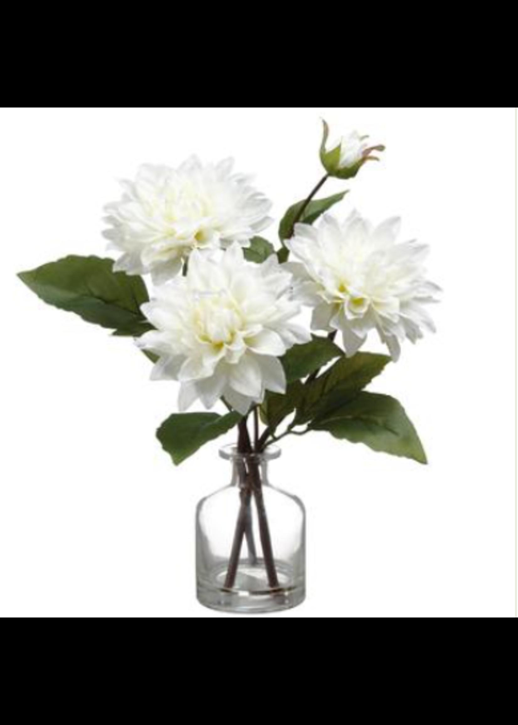 Allstate Dahlia in Glass Vase