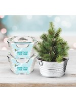 Buzzy Seeds Holiday Christmas Tree to Be
