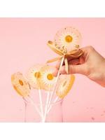 Sweet Caroline Lollipop