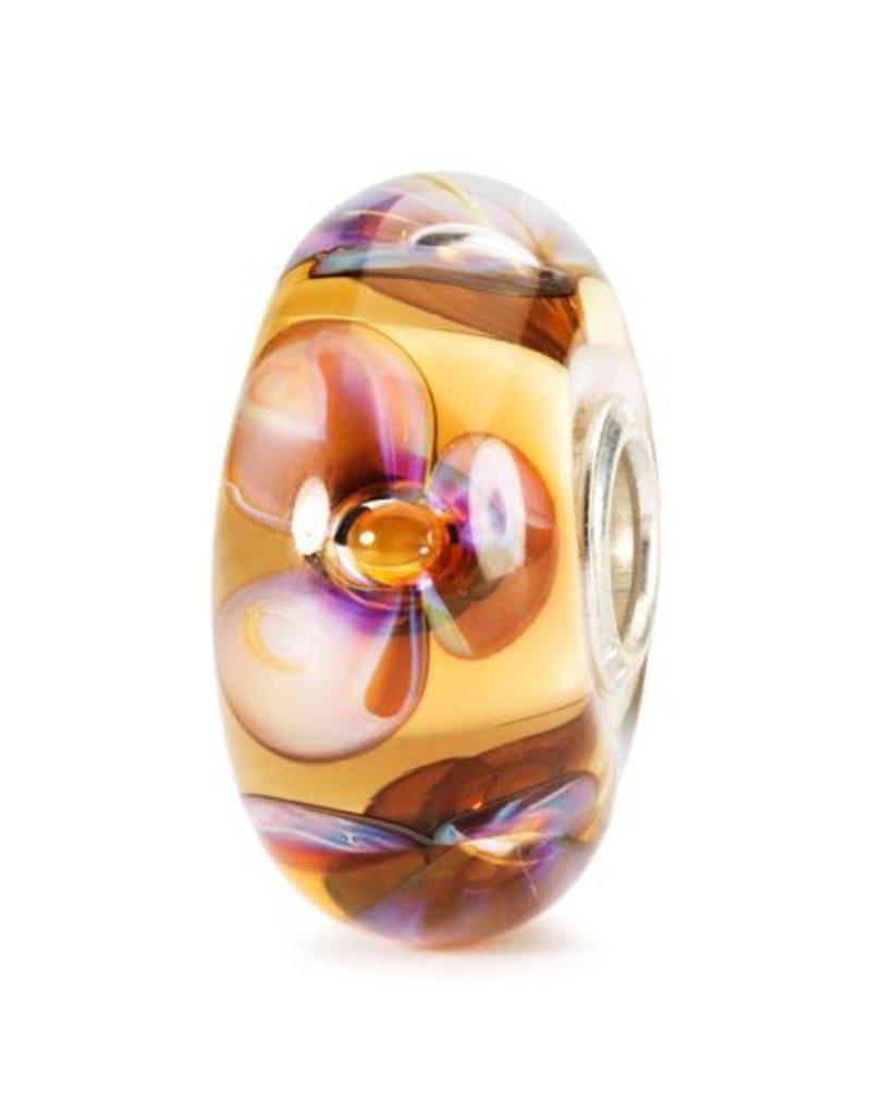 Amber Violets, Glass