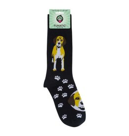 Beagle Socks