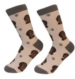 Dachshund Black Socks