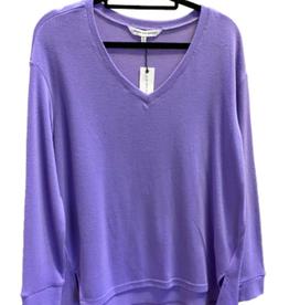 Rhonda Aster Purple