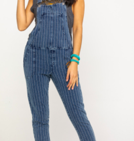 Stripe Denim Overalls
