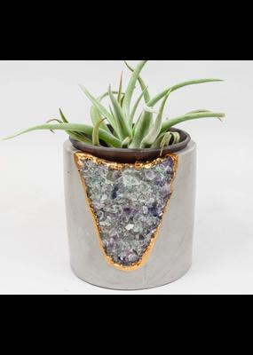 Tal & Bert Fluorite Mod Planter