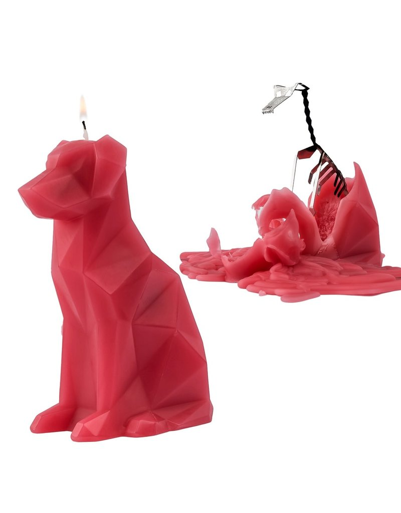 54 Celcius PyroPet Voffi Berry - Dog Candle