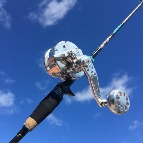 Abu fishing Everol Vj6 Abu Salty Stage SSKR Jigging SJC-631/250KR PE:1-4 250g combo