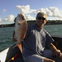 Winter: hunting snapper in shallow water