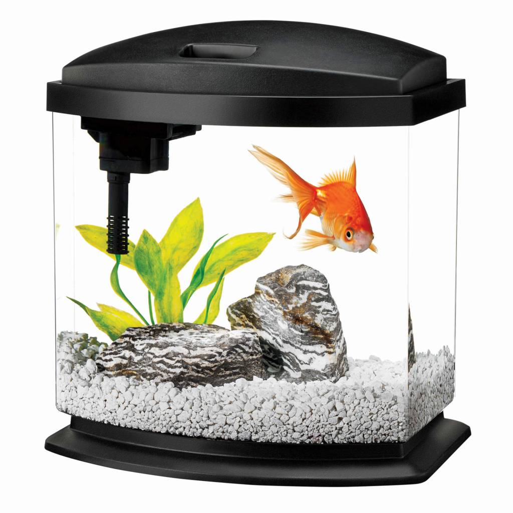Aqueon Aqueon Mini Bow 2.5 Gal  Black