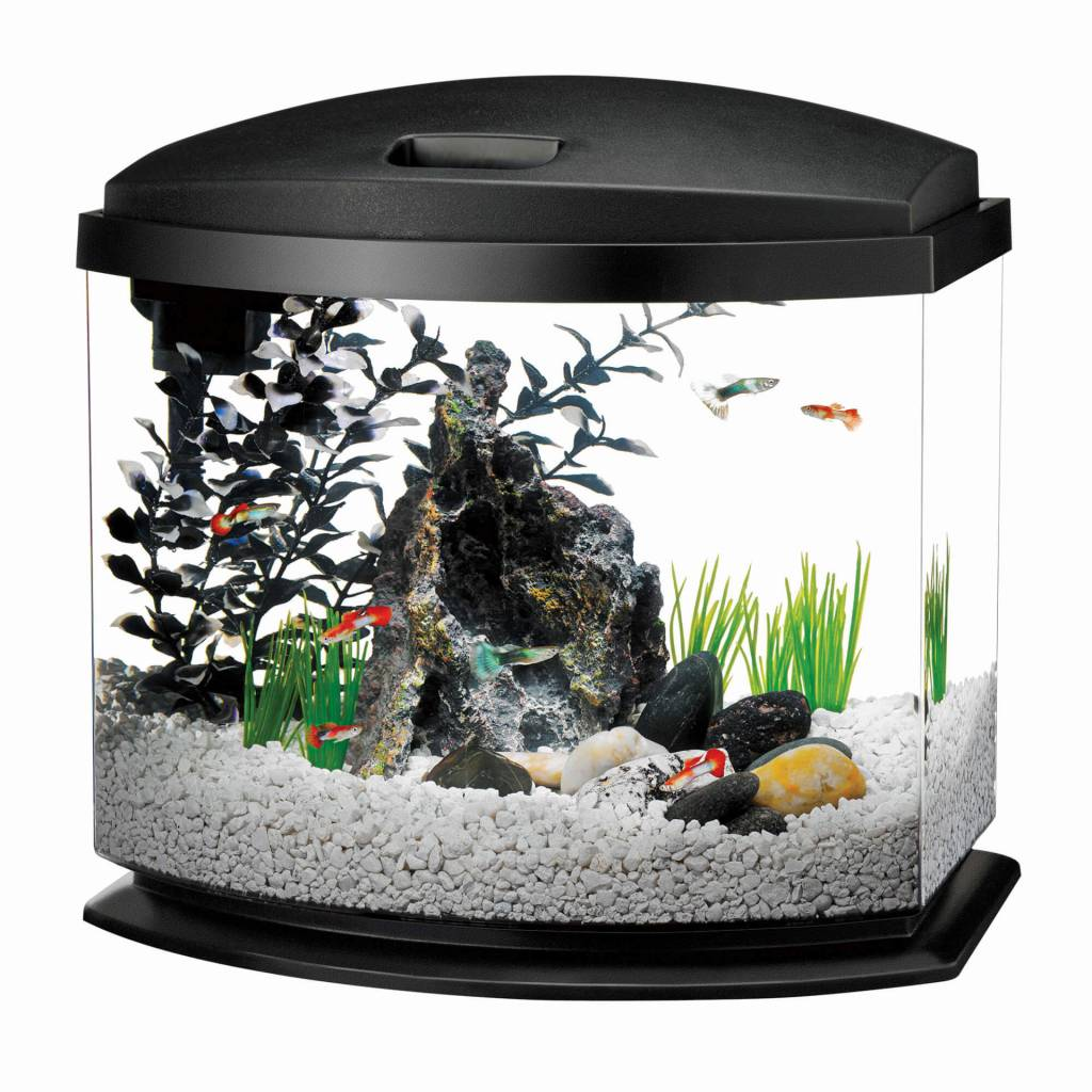 Aqueon Aqueon Mini Bow 5 Gal Black