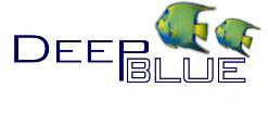 "Deep Blue Bonded Filter Pad 24x15"""