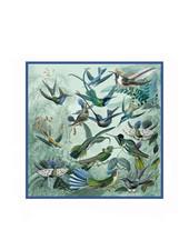 HUMMING BIRD SHAWL