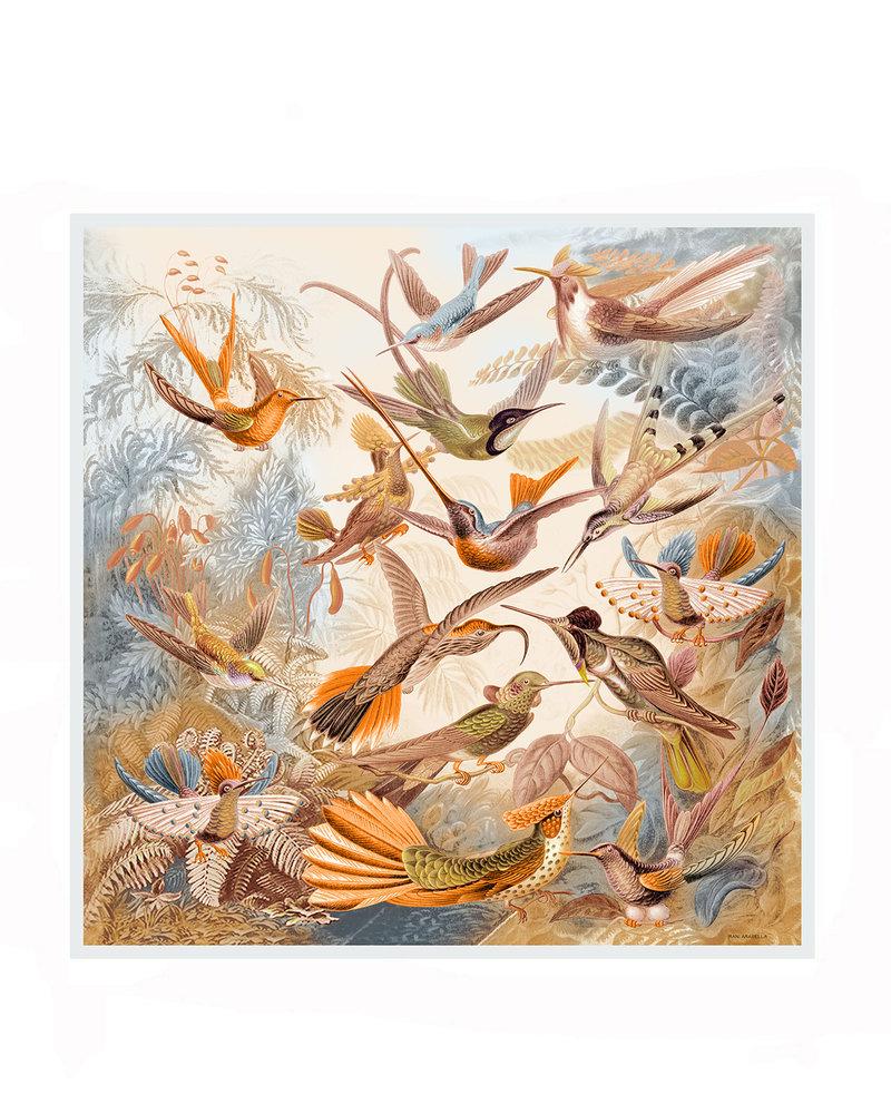 CASHMERE PRINTED SHAWL: HUMMING BIRD: ORANGE-BLUE
