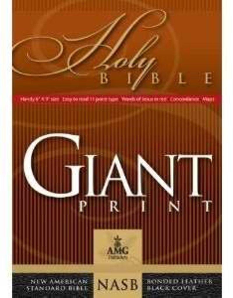 AMG Publishers NASB Giant Print Handy Size Bible
