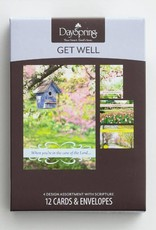 Get Well Spring Time 12 Boxed Cards