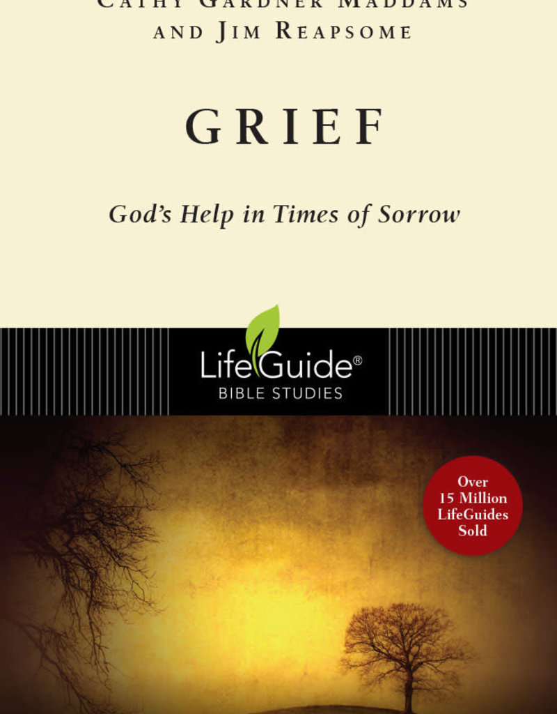 Grief God's Help in Times of Sorrow