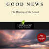 Good News The Meaning of the Gospel