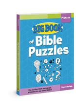 David C Cook Big Book Of Bible Puzzles For Preteens