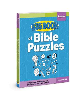 David C Cook Big Book Of Bible Puzzles