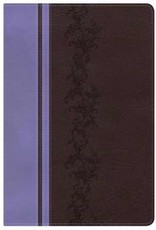 B & H Publishing KJV Holman Rainbow Study Bible-Brown/Lavender LeatherTouch Indexed