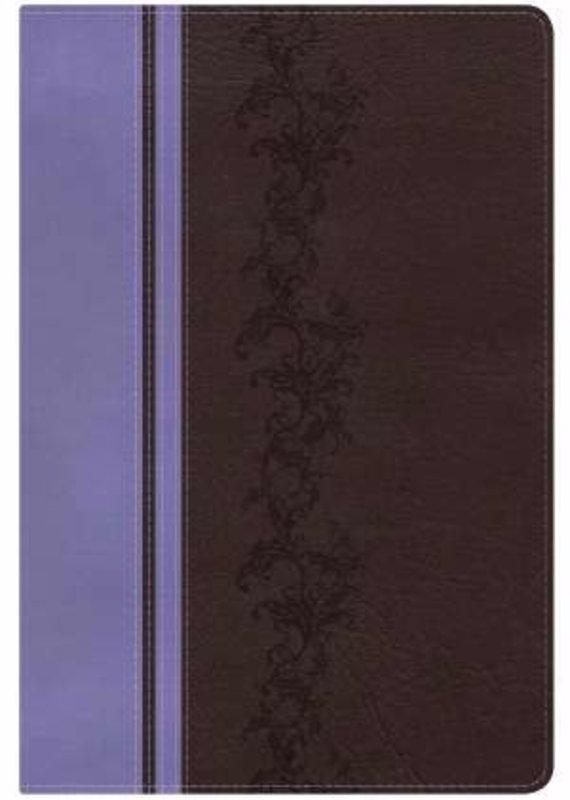 B & H Publishing KJV Holman Rainbow Study Bible