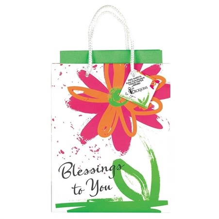 GIFTBAG MEDIUM BLESSINGS TO YOU