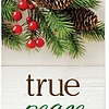 Tracts - True Peace 20