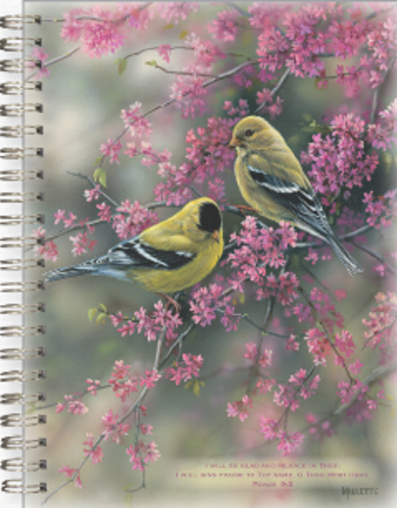 Journal - Goldfinches & Redbud