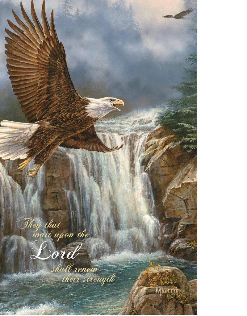 JOURNAL - ON EAGLES WINGS